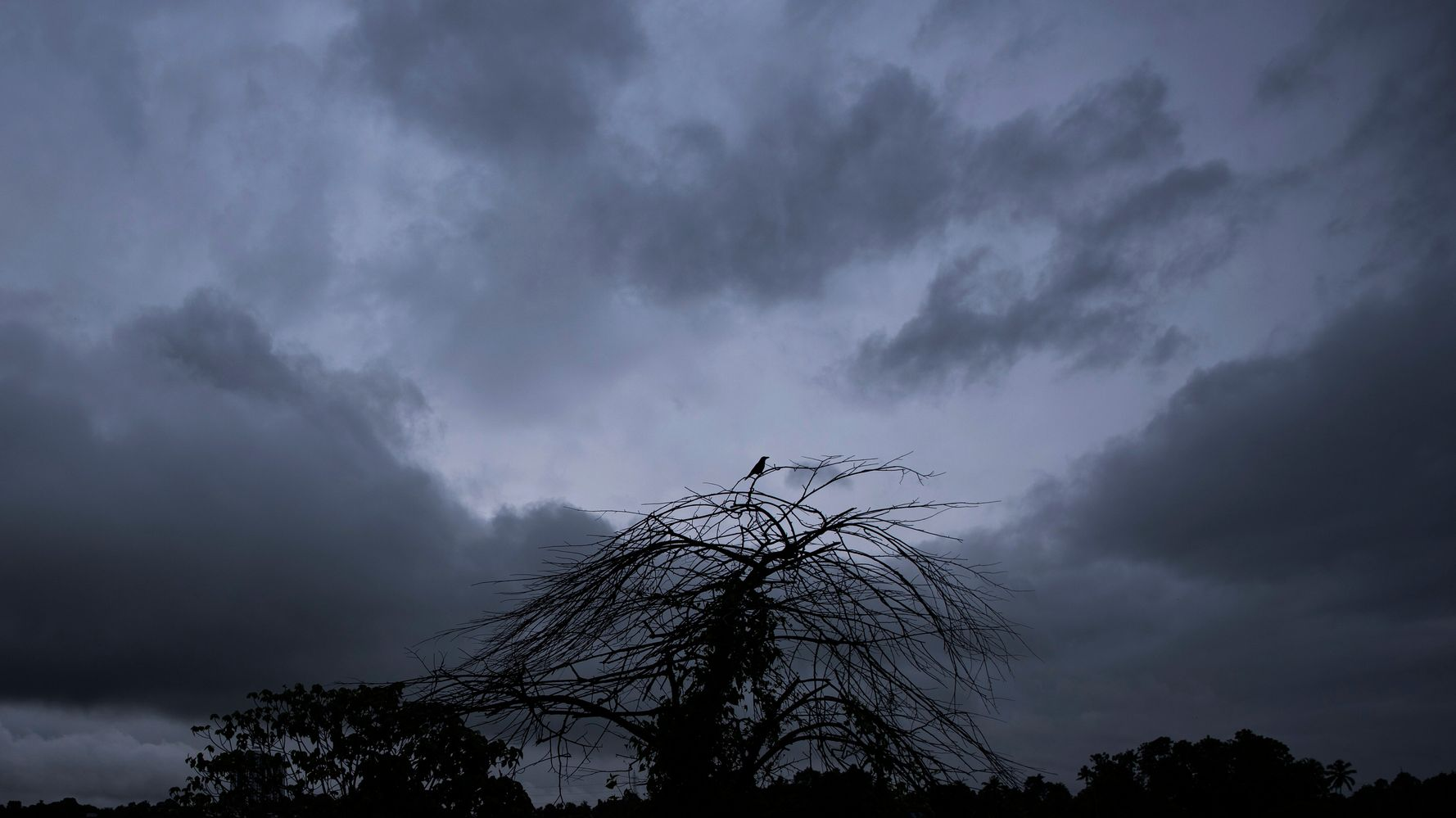 Heavy Rains, Landslides Leave At Least 18 Dead In South India