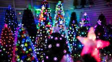 Ordering An Artificial Christmas Tree? Here's What You Should Know.